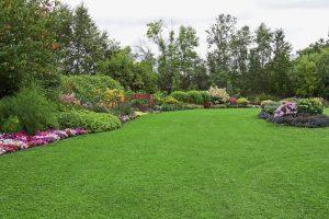Благоустройство и озеленение территории