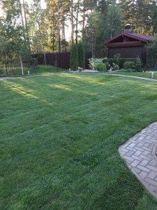 Уложенный рулонный газон