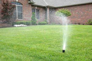 Устройство рулонного газона и системы полива