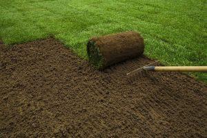 Процесс укладки рулонов газона